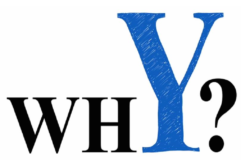 y - nəsili