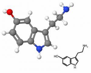 serotonin-hormonu-nədir